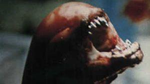 Alien-octavo-pasajero-Ridley-Scott_TINVID20121023_0011_3