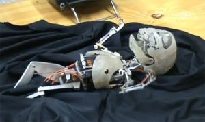 robot-bebe-humano