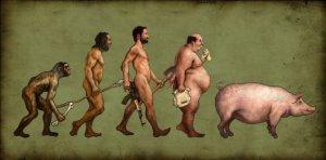 evolucion-hombre-cerdo